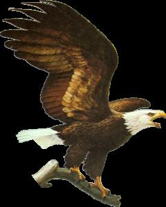 Eagle Trust Fund